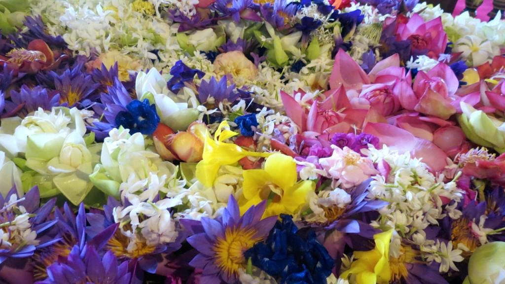 flores cm tg