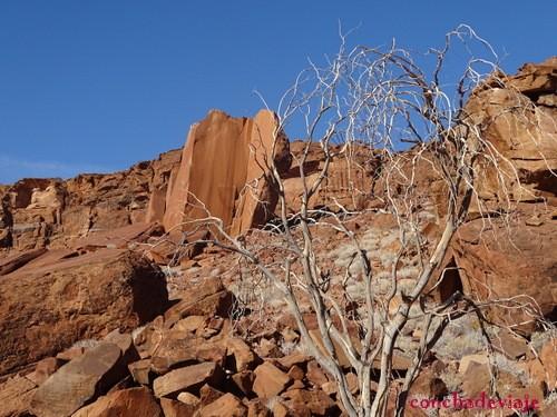 Entrada Twyfelfontein