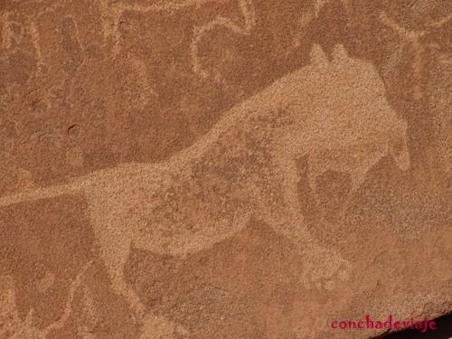 petroglifo Twyfelfontein