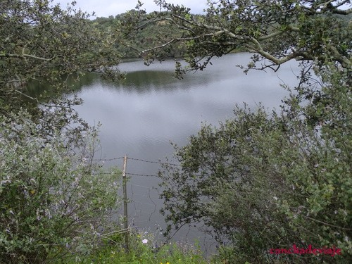 Lago en El Esparragal