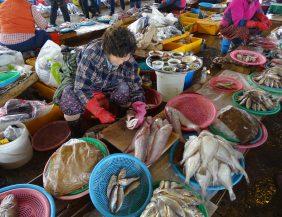 mercado de Jagalchi